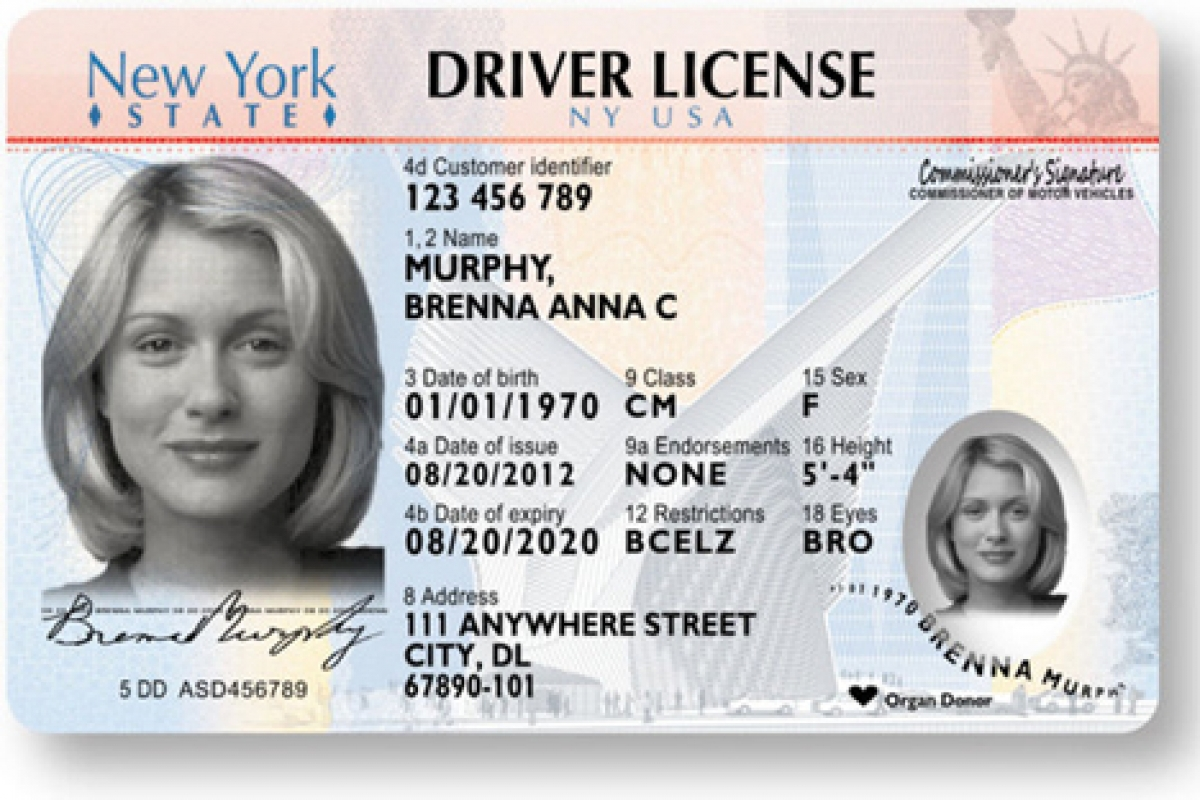 Get your passport driver license and id card health for Wisconsin drivers license template