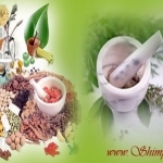 Ayurvedic treatments For Hearing Loss and Deafness