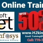 .NET Online Training and Placement Assistance