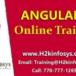 Angularjs Online Training Course in USA