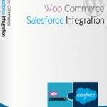 Woocommerce And Salesforce Integration At Store Tech9logy