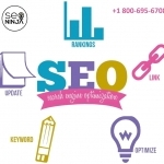 Best SEO Services Company in Washington ASK SEO NINJA