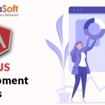 Hire the Certified AngularJS Developers in USA
