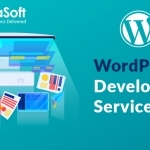 Looking for Dedicated Wordpress Developer? Hire Andoalsoft.