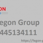Fegon Group | Providing Best Network Security Solutions | 8445134111